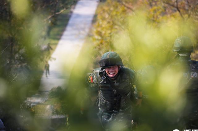 宁波特战队员负重30公斤 深山丛林砺精兵