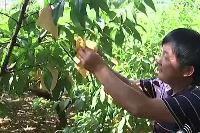 宁波市新增4项国家生态原产地保护产品