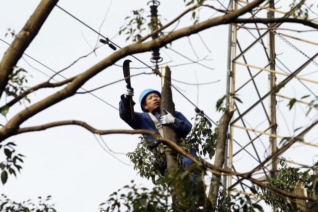 宁波电网攻守结合维护线路 确保春节全社会可靠供电