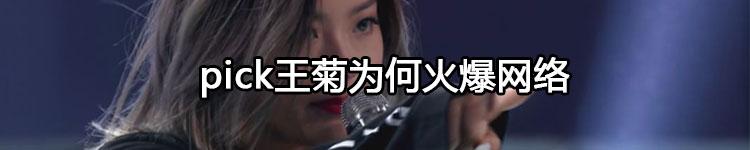 """""""一菊成名""""后 王菊真的火到《环球时报》"""