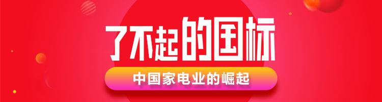 中国家电业的崛起