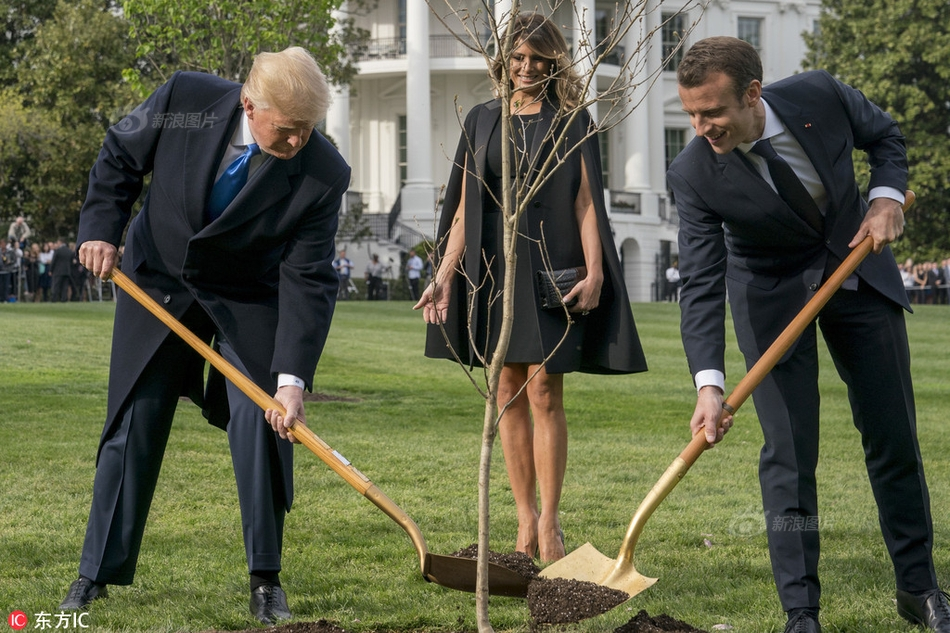 备忘录泄露 白宫矛头对准福奇?