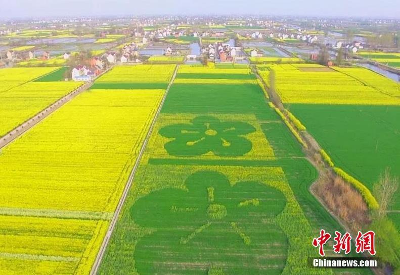 国家药监局启动中国药品监管科学行动计划