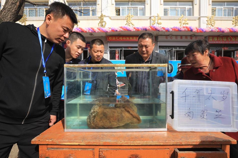 总书记主持的会议,强调中国制度优势的保证