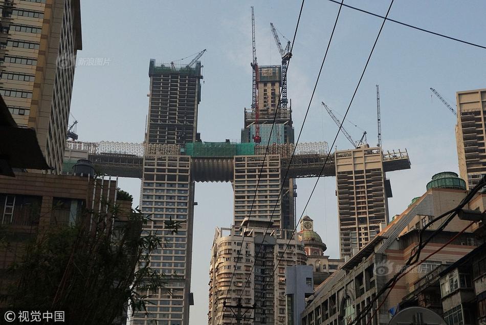 中国国画院20套违建别墅被没收