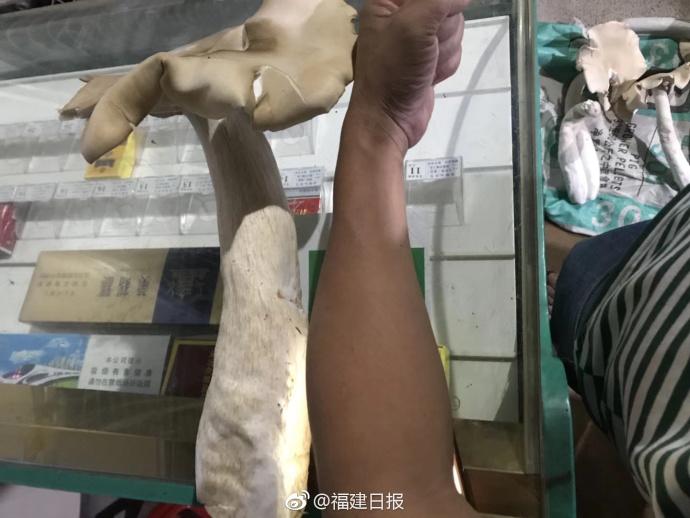 【搜狐健康公卫课 | 预告】新冠疫苗三期临床数据解读