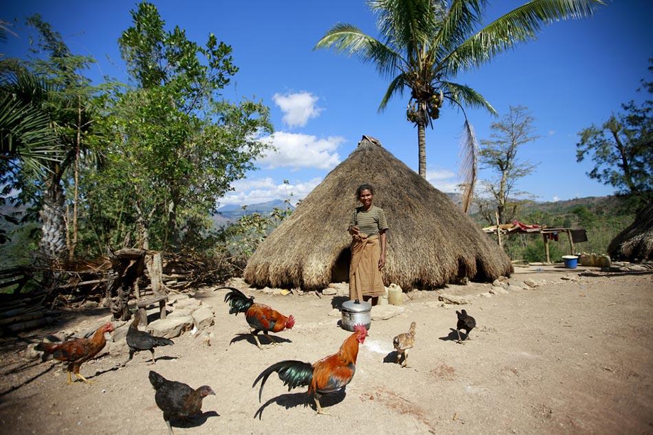 东帝汶:亚洲最年轻国家
