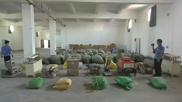 春韭、玉兰、紫藤……一位杭州青年画家疫期笔下的节气生机