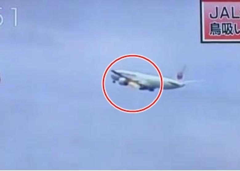 日本一客机遭鸟撞击后起火 紧急折返机场