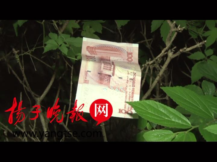 熊孩子自家阳台扔万元现金 邻居找回9300元