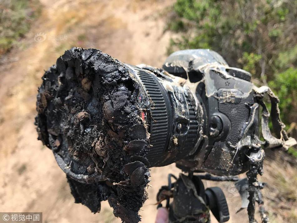 台黑鹰生还者口述内容曝光 失事原因将水落石出