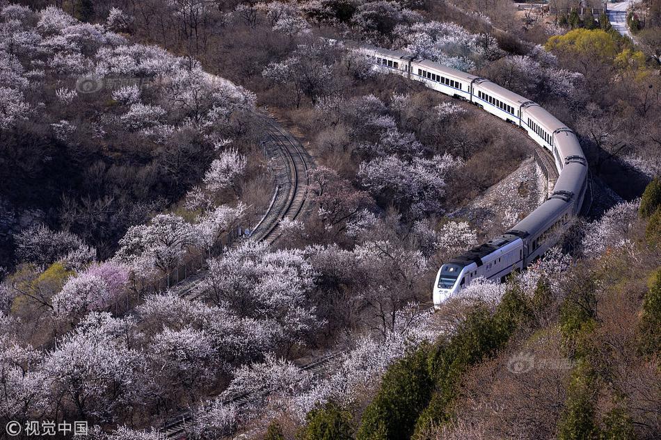 武汉地铁恢复6条线路,开通车站数占比80%