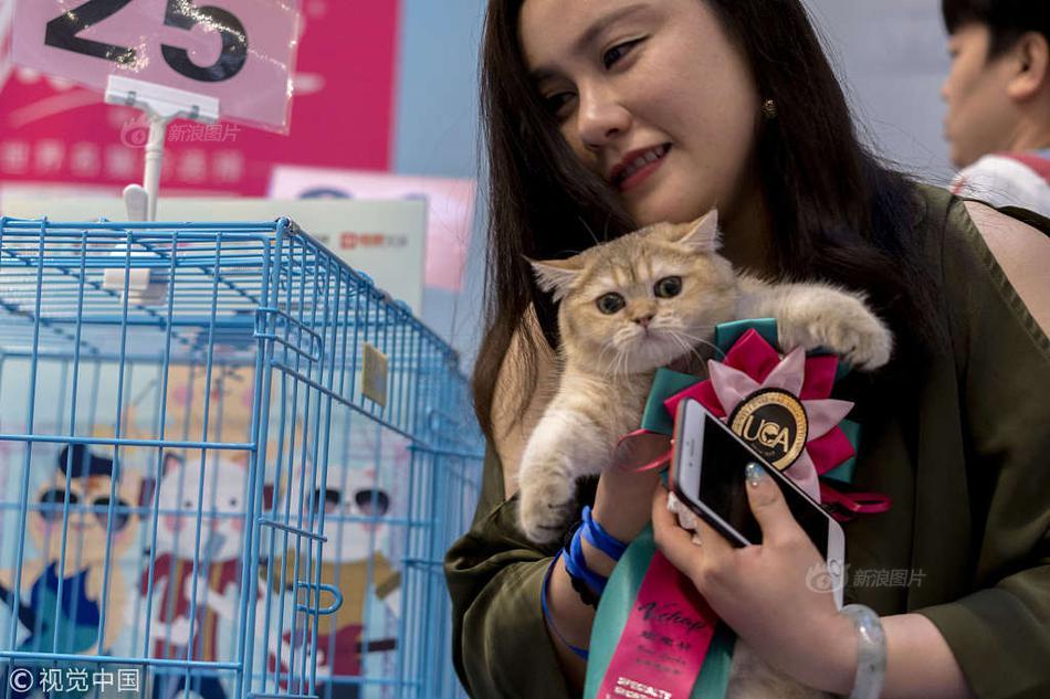 好运来国际网址是多少--麵對麵對名和貓精日擒
