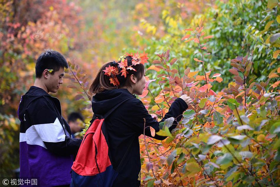 深圳拟禁食野生动物名单甲鱼在列引争议,专家建议不必一刀切