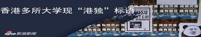 """林郑月娥:校园挂""""港独""""横幅海报属有组织行为_新浪专题"""