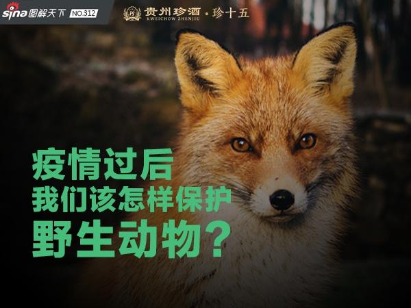 疫情后该怎样保护野生动物?丨新浪新闻2020全国两会特别策划