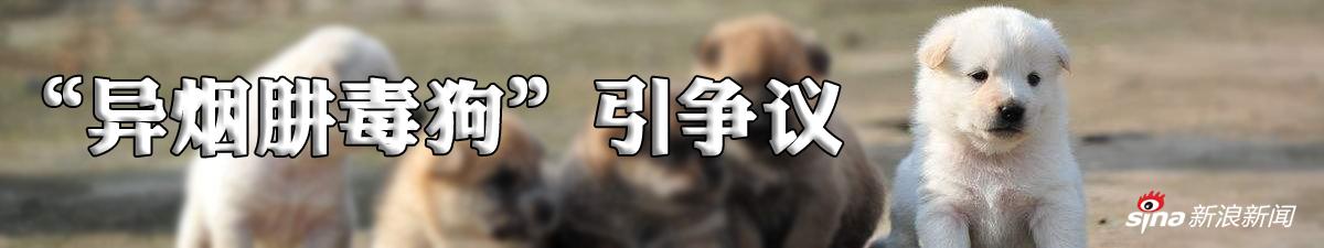 异烟肼毒狗引发热议 是杀戮游戏还是正义之道?