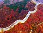 航拍红叶岭红叶区