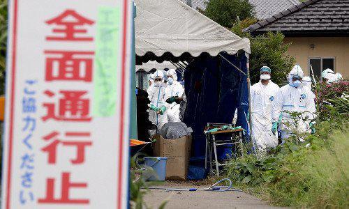 日本时隔26年首次发生猪瘟疫情 将扑杀610头猪