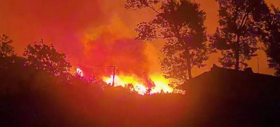 连续发生两起森林火灾 九龙县森防指指挥长被约谈