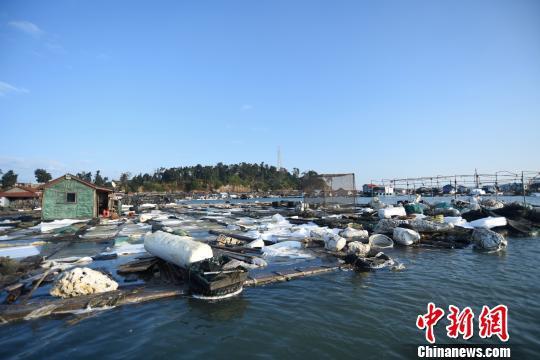 受事故影响,不少渔排上的泡沫浮材被腐蚀,造成渔排下沉,当地渔民损失严重。 陈龙山 摄
