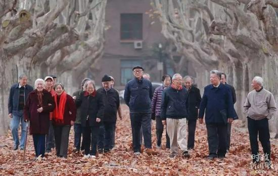 △西安交大校园里,有一条闻名的梧桐大道。这些梧桐树是60多年前西迁时从南边运来栽种的。这是部门西迁老传授行走在梧桐大道上。