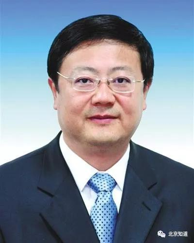 北京市长陈吉宁都担任过哪些小组组长?