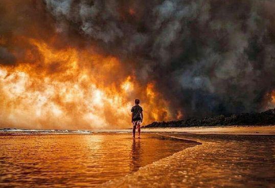 澳大利亚山火持续数月(图源:外媒)