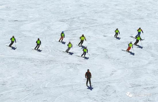 缺人!速来!冰雪专业人才遭企业疯抢…