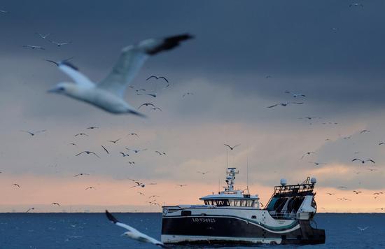 英方允许欧盟渔民继续在英国渔场捕鱼5年半 英渔民:非常失望
