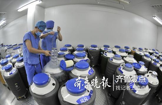 山东大学附属生殖医院的工作人员在冷冻胚胎库存放胚胎。医院供图