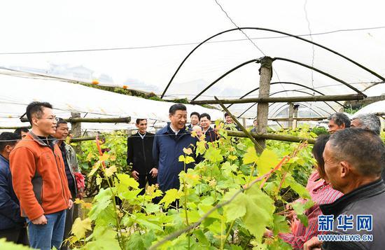 2021年4月25日上午,习近平在桂林市全州县才湾镇毛竹山村,走进葡萄莳植园,同农技职员和村民亲热交换。
