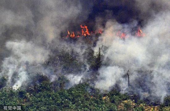 当地时间8月23日,巴西北部隆多尼亚州,航拍亚马孙雨林火灾灾区。