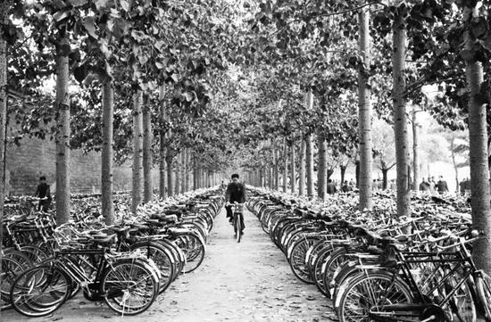 1982年,北京街头停放的自行车