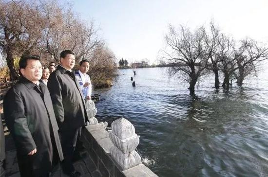 2015年1月20日,习近平来到大理白族自治州大理市湾桥镇古生村,细心观察洱海滨的生态维护湿地。新华社记者 鞠鹏 摄