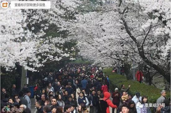 ▲3月20日,武汉大学樱花节启幕首日,提前网上预约赏樱的众多游客如约而至。图/视觉中国