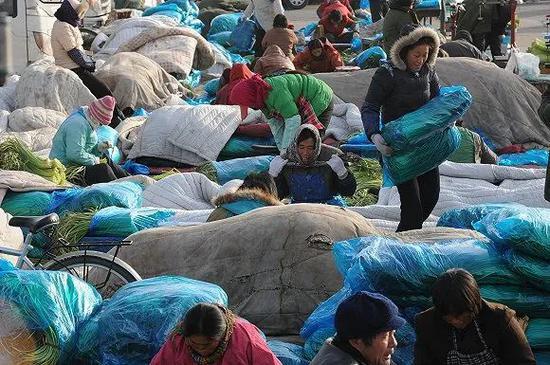 北京新发地农产物中央批发市场。(图片泉源:视觉中国)