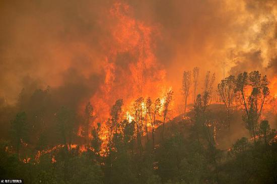"""美国加州大火持续肆虐 天空变橙色好似""""世界末日"""""""