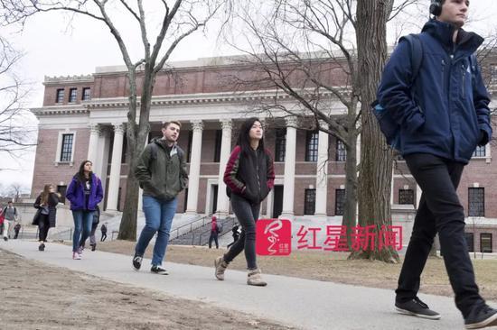 ▲走在哈佛校园里的学生们  图据华尔街日报