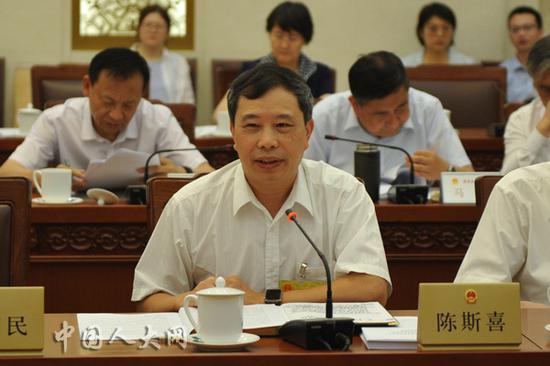 全国人大常委会委员陈斯喜在分组会上发言
