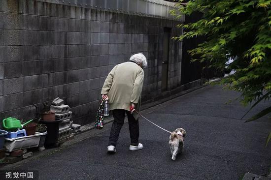 牵着宠物狗的日本老奶奶。