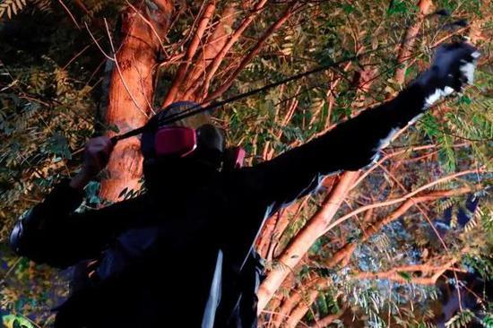申博网址是什么 从前有棵树,叫高数,树上挂了很多人