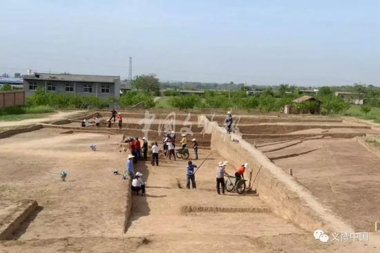 宝宝计划,皇陵园发现大型陪葬墓金骆宝宝计划驼图片