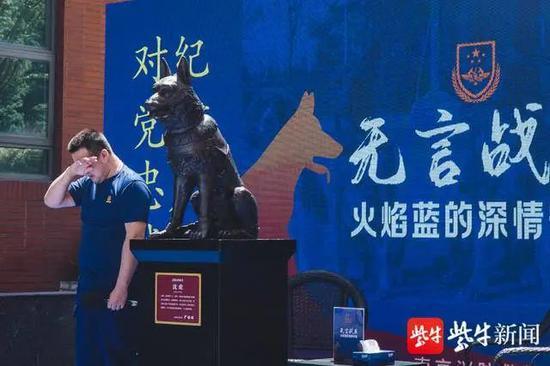 """还记得功勋搜救犬""""沈虎""""吗?如今它化为一尊铜像图片"""