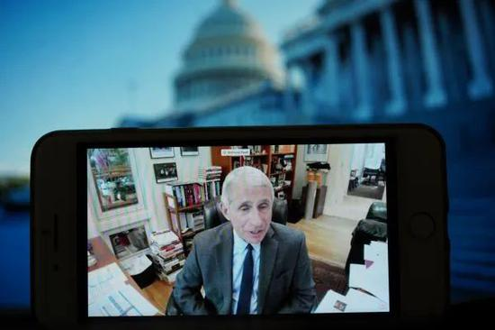 ▲5月12日,安东尼·福奇以视频会议方式参加在美国华盛顿举行的国会听证会。(新华社)