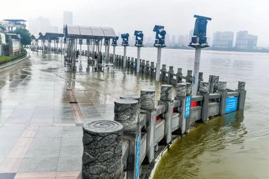 刚刚!武汉关到达警戒水位图片