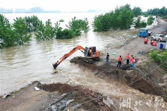 湖北黄梅县滨江圩长江堤防被挖开 万亩土地被淹图片