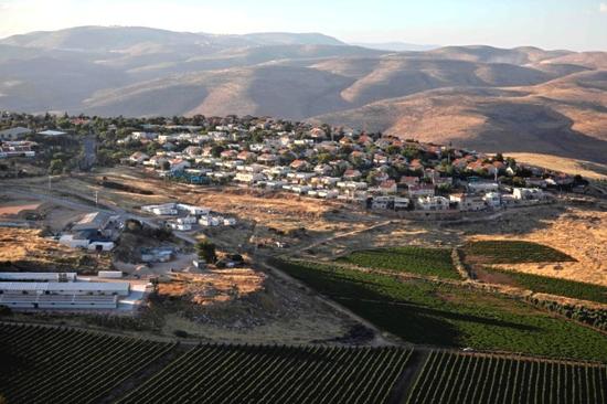 这是6月18日拍摄的约旦河西岸一处犹太人定居点。新华社/法新