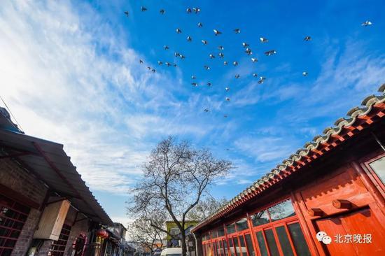北京东西城胡同居民关心的这事儿,最新答案来了!