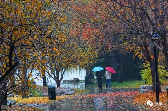 北京城区最大降水量出现在朝阳朝外!这场雨仍在停留徘徊图片